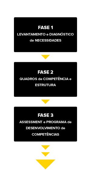 esquema_executiveassessment